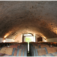 Visit to Tuscan wine cellar - Philip's Excursions