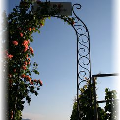 Vineyard gateway - Philip's Excursions